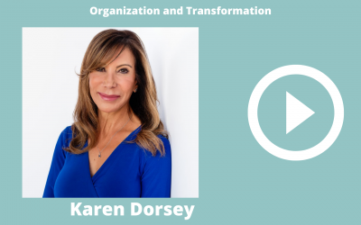 Divorce Coach Stories – Organization and Transformation